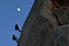Rock Climbing Photo: Jtree, by C. Kuzdas
