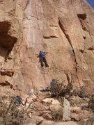 Rock Climbing Photo: Jesse Jakomait starting up Great Expectations.