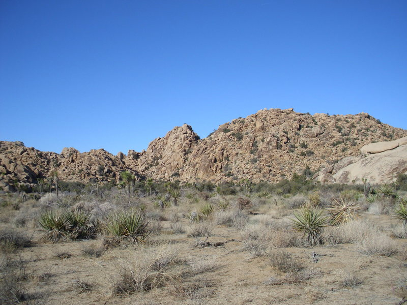 A view of the area from the hike in. The water grooved slab is on the rightside of the picture.