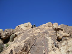 Rock Climbing Photo: Live Free and High