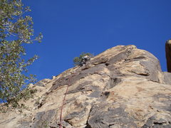 Rock Climbing Photo: The upper section....