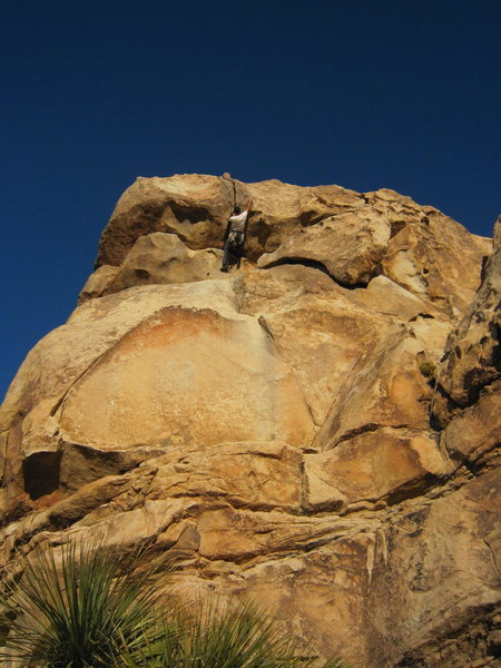 Tony Bubb goes horizontal following Joseffa Meir on Roller Ball (5.10) in J-tree's Outback.  Photo by Erin Haas, 11/2010.