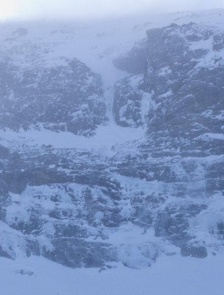 AMU conditions 20110103
