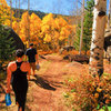 Hiking through the Klettergarden after a quick session. <br> <br> Most insane aspen colors ever!!!<br> <br> Sept. 19th, 2010.