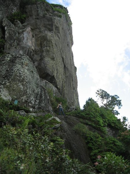 "This is called The Needle, the only bare (non-lush) rock near the top of the island of Rarotonga...it has an approach of about 2.5 hours through rocky, mountainous, jungle-like terrain..if only we had had room for the gear on the flight...there's a little sign bolted to the base telling you the 'Trail ends here"" and to go any farther is to do so at you own risk...there is a chain bolted via ferrata style leading halfway around the base to where there is a length of rope made of at least 30 little pieces of rope to get to the very top ( I was severely advised by a few natives not to trust the rope)"