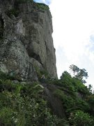 Rock Climbing Photo: This is called The Needle, the only bare (non-lush...