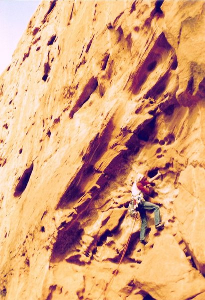 Rock Climbing Photo: Project - Breaking the Law (5.10?) - Day 2  forego...