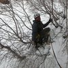 Ahh...traverse on loose, deep snow and small, scratchy bushes:  doesn't get any better'n this.  <br> <br> The way to the rappel tree on Mineral Fork Ice.
