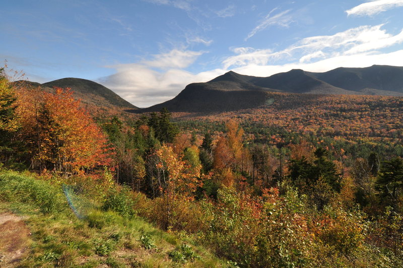 white mountains and foilage