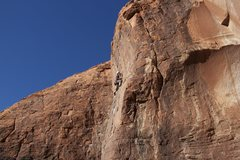 Rock Climbing Photo: Kate nearing the crux finish of When the Cat's Awa...