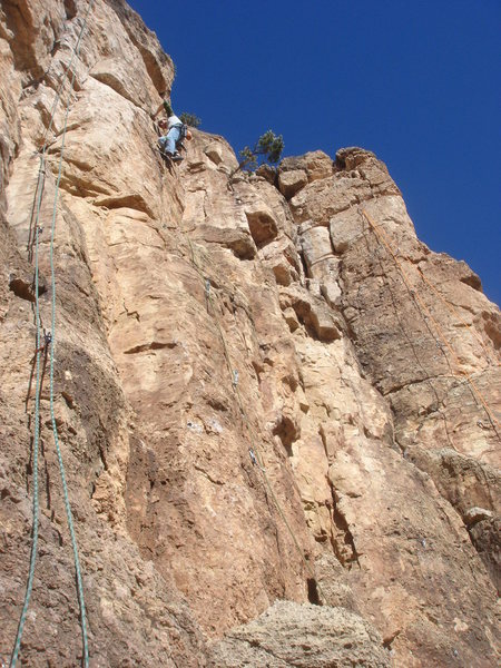 Rock Climbing Photo: Joshua high on Dillinger.