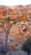 Rock Climbing Photo: Soloing Big Moe