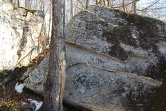 Rock Climbing Photo: Bob starts just to the right of the tree and then ...