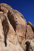 Rock Climbing Photo: Feast topo