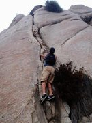 Rock Climbing Photo: scoping it out