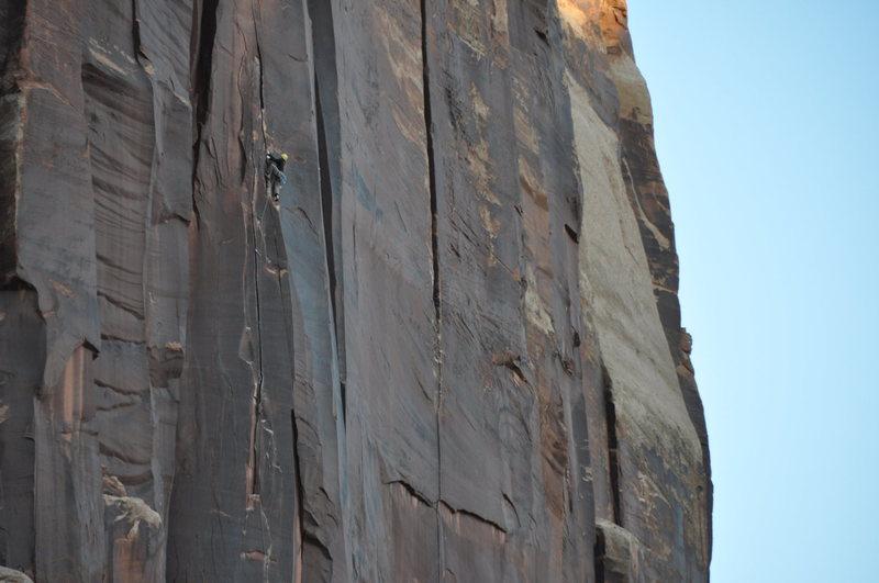 Rock Climbing Photo: ian climbing a desert splitter