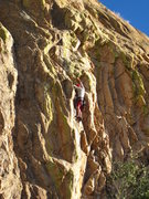 Rock Climbing Photo: Just passed the 4th bolt