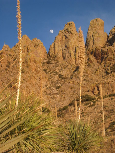 Rock Climbing Photo: Moonrise over Lesser Spire (center) and ORP (right...