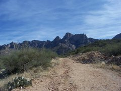 Rock Climbing Photo: Decided I would walk down the old roadcut a little...