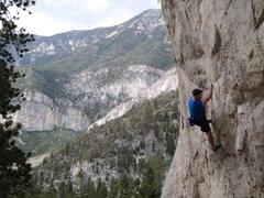 Rock Climbing Photo: Good times clipping bolts @ Charleston