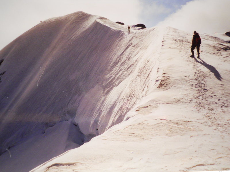 Mount Athabasca Summit<br> Photo by Kirk Miller<br> August 1997ish<br> <br>