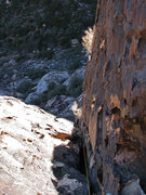 Rock Climbing Photo: Looking down Cookie Monster from a belay position ...