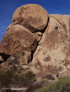 Rock Climbing Photo: Vaino's Lost In Pot, 5.7 R+