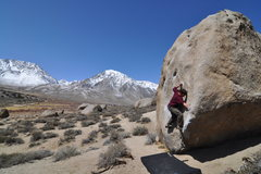 Rock Climbing Photo: Buttermilk Stem