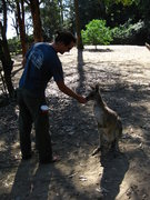 Rock Climbing Photo: me getting to know some of the locals outside of N...