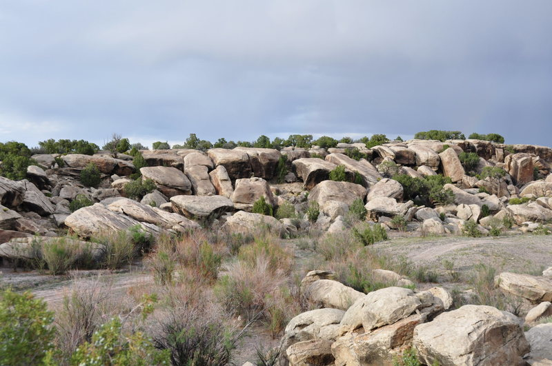 walking into the Land of a Thousand Boulders