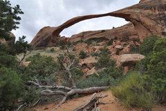 Rock Climbing Photo: Landscape Arch, Arches NP, UT