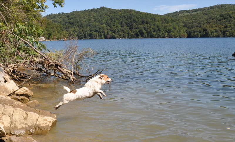Moe launching into the water at Summersville Lake