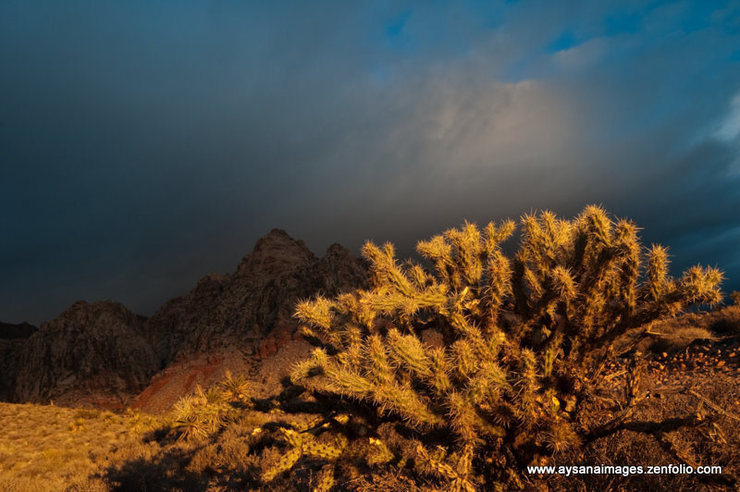 Rock Climbing Photo: Sunrise on a stormy morning, Red Rocks, Nevada