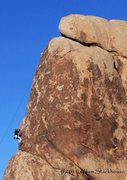 Rock Climbing Photo: Lowering off of the popular family crag of Billboa...