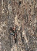 "Rock Climbing Photo: Susan Peplow on ""White Out"". Photo by Bl..."