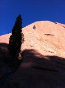 Rock Climbing Photo: Climbing Coyote Verde.