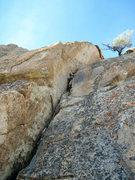 Rock Climbing Photo: L. Christman getting into it.