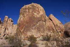 Rock Climbing Photo: King Otto's Castle (L-R)  1. Goodbye Mr. Bond (5.1...