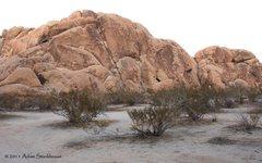 Rock Climbing Photo: The Haberdashery 5.8