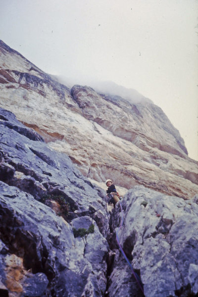 Rock Climbing Photo: Low on the Pilastro Route looking up the wall at t...