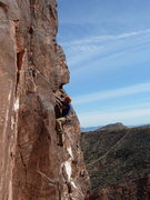 Rock Climbing Photo: Nesting gear before the crux...
