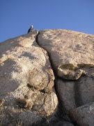 Rock Climbing Photo: Matt after leading Solarizer.