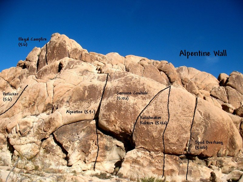 Photo/topo for Alpentine Wall, Joshua Tree NP