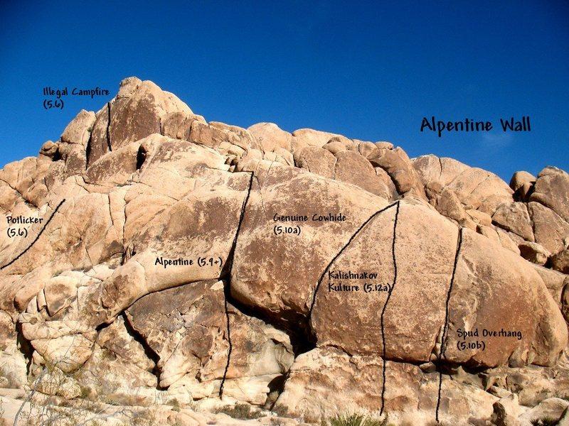 Photo/topo for Alpentine Wall, Joshua Tree NP