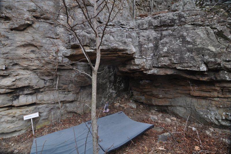 Rock Climbing Photo: Tongue Lash, Mullet Buttress, Horseshoe Canyon Ran...