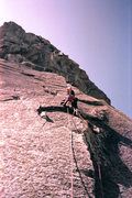 Rock Climbing Photo: Kristian Solem leading on the North Buttress of Th...