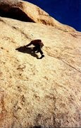 Rock Climbing Photo: Jim Hammerle on the FA of Cookies and Kropf (5.10)...