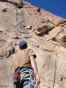 Rock Climbing Photo: ClimbPHX belaying on Token Of My Extreme