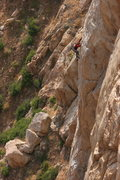 Rock Climbing Photo: Tail Tucker Arete 11+