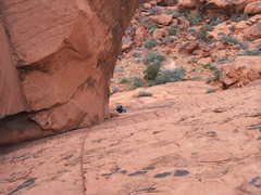 Rock Climbing Photo: Troy cleaning the second pitch of The Great Red Bo...